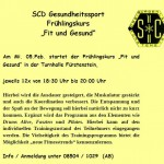 Info_SCD_Fruehlingskurs_02_2020