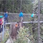 Hängebrücke Riesachfall